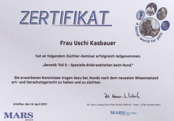 Zertifikat Uschi Kasbauer